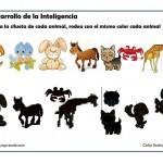 desarrollo de la inteligencia 1 025 150x150 Fichas para el  Desarrollo de la Inteligencia 1ºde Primaria